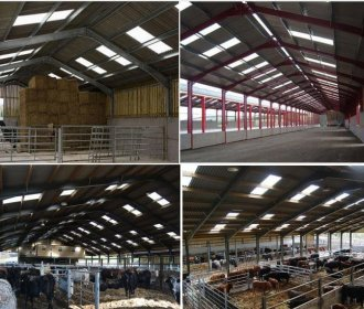 Steel Livestock Buildings
