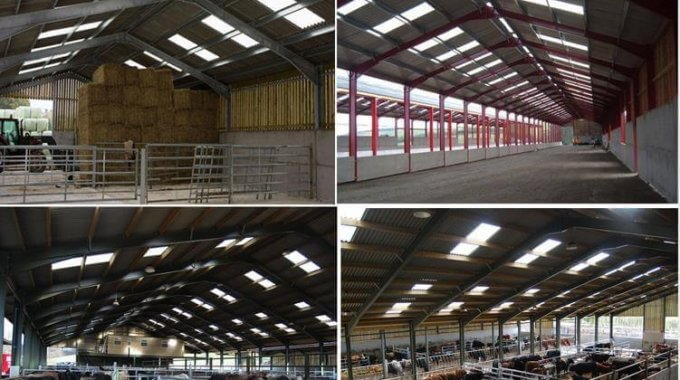Steel Livestock Buildings