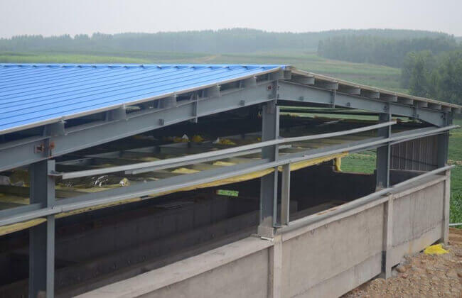 Steel Structure Livestock Buildings